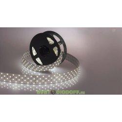 Лента светодиодная ЛЮКС RT 2-2500 24V White 4x2 (2835,700 LED, LUX)