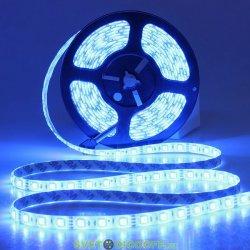 Лента светодиодная стандарт SMD 5050, 60 LED/м, 14,4 Вт/м, 12В , IP20, Цвет: Синий