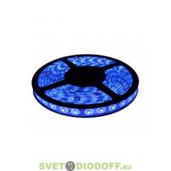 Лента светодиодная 3528/120 IP20 5м.п. синий