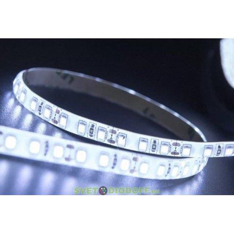Лента светодиодная стандарт 2835, 120 LED/м, 9,6 Вт/м, 12В , IP65, Цвет: Холодный белый