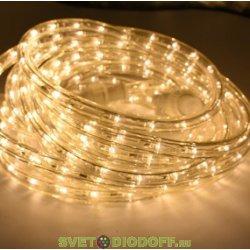 Комплект Дюралайт LED, свечение с динамикой (3W), 24 LED/м, ТЕПЛЫЙ БЕЛЫЙ, 6м