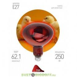ИК лампы для обогрева животных и растений ЭРА ИКЗК 220-250 R127