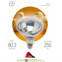 Инфракрасная лампа ИКЗ 220-250 R127 E27