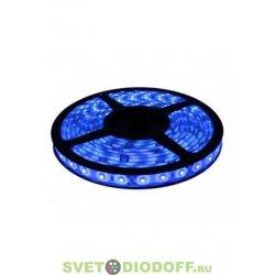 Лента светодиодная 3528/60 IP65 5м.п. Синий